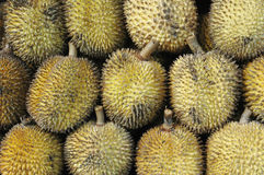 Elai, tropische vruchten zoals durian fruit Stock Foto's