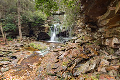 Elakala-Fälle - Canaan Valley, West Virginia Stockbild