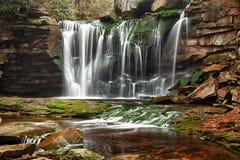 Elakala fällt in West Virginia Stockbild