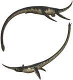 Elasmosaurus. Lived in Northamerica - isolated on white Stock Photography