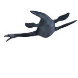 Elasmosaurus illustrazione di stock