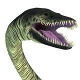 Elasmosaurus Reptielhoofd vector illustratie