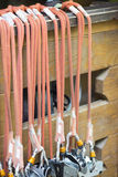 Elastic ropes Royalty Free Stock Image