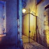 Żelazna brama i streetlight Zdjęcia Royalty Free