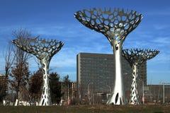 Żelazny drzewo Zdjęcia Royalty Free