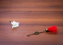 Żelazny klucz kłama na stole Obraz Royalty Free