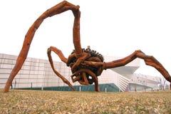 Żelazny pająk Fotografia Stock