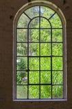 Żelazo, stal, flanca, rośliny okno zdjęcia stock