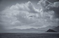Elba Island royalty-vrije stock afbeeldingen