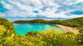Elba Island Royalty Free Stock Photos