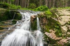 Elbe Labe rzeka w górach republika czech zdjęcie royalty free