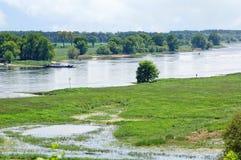 Elbe River landskap i saxony anhaltTyskland Viden och ?ngar royaltyfria bilder