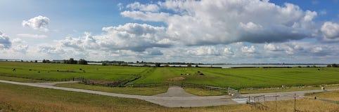 Elbe Rzeczna sceneria w Kollmar Holstein, Niemcy,/ obraz royalty free