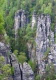 Elbe sandstenberg royaltyfri bild