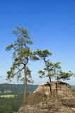 The Elbe Sandstone Mountains Stock Photos