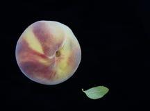 Elberta Peach Images libres de droits