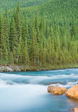 Elbow Falls at Nightfall Stock Images