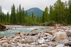 Elbow falls Royalty Free Stock Image
