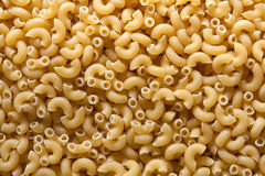 Elbow macaroni Stock Image