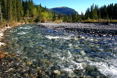 Elbow River/bridge/mountains Stock Photos