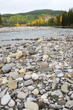 Elbow river valley in autumn Royalty Free Stock Photos