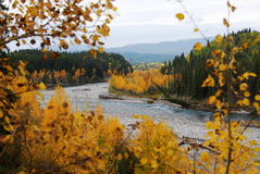 Elbow river valley in autumn royalty free stock image