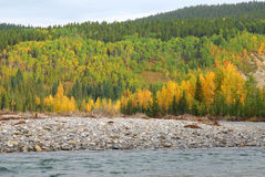 Elbow river valley in autumn Royalty Free Stock Photo