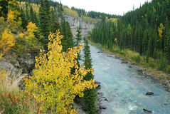 Elbow river valley in autumn Stock Photo