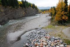 Elbow River Valley in autunno Fotografie Stock