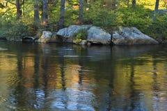 Elch-Fluss-Reflexionen Lizenzfreies Stockfoto