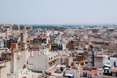 Elche Stock Photography