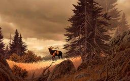 Elche in den felsigen Bergen Stockbilder