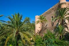 Elche Elx Alicante el Palmeral palmträd parkerar och Altamira Pala Royaltyfri Foto