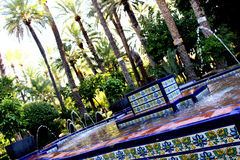 Elche. Fountain in the spanish elche Royalty Free Stock Images