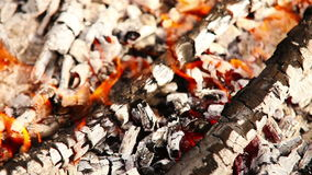 Eldbränder av picknicklägereldbakgrund stock video