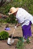 Eldely Frau mit Schaufel im Garten stockfotografie