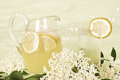 Elder blossom juice Stock Photography