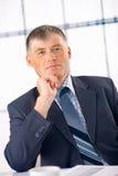 Elder Businessman. royalty free stock images
