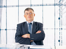 Elder Businessman. Stock Photography