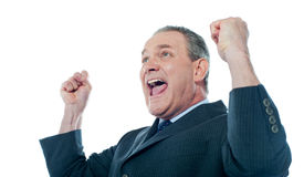 Elder businessman in a victory pose Stock Images
