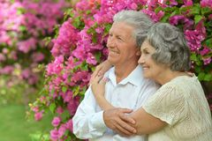 Elder couple on pink flowers Stock Photo