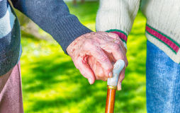 Elder couple with stick hand to hand walking in the garden Royalty Free Stock Images