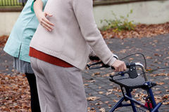 Elder with disability. Nurse helping elder person to walk with walker Stock Photography
