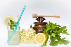 Elder Flower Lemonade Royalty Free Stock Image