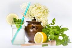 Elder Flower Lemonade Royalty Free Stock Images