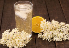 Elder flower refreshment Royalty Free Stock Photos