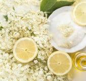 Elder flower,sugar and lemon  preparation for syrup Stock Photos