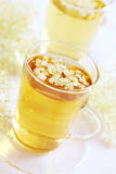 Elder flower tea Royalty Free Stock Photo