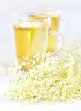 Elder flower tea Stock Photography