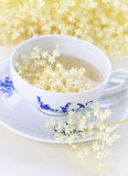 Elder flower tea Stock Image